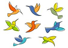 Colorful hummingbirds symbols or icons Royalty Free Stock Images