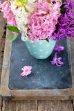Colorful hyacinth flowers in a polka dot cup Stock Photography