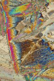 Colorful ice crystals. Under polarized light Stock Image
