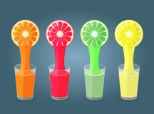 Colorful illustration of  citrus fruits and glasses Stock Photography