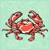 Colorful illustration of crab 1 Stock Photography
