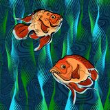Colorful illustration of fish 4 Stock Photo