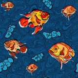 Colorful illustration of fish seamless pattern Royalty Free Stock Photography