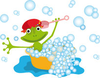 Colorful illustration with a frog Royalty Free Stock Images