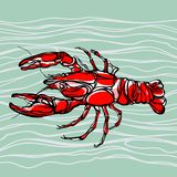 Colorful illustration of lobster 1 Stock Image