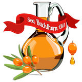 Colorful illustration of Sea Buckthorn oil 1 Stock Images