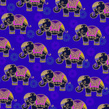 Colorful Indian Elephant pattern Royalty Free Stock Photos
