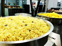 A colorful Indian rice dish made from basmati rices spices and fresh vegetables.  Stock Images
