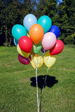 Colorful inflated helium balloons in the bundle are flying off the trees Stock Image
