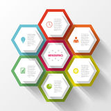 Colorful infographic with honeycomb structure. Vector Royalty Free Stock Images