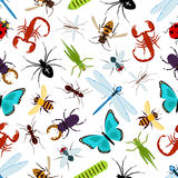 Colorful insect animals seamless pattern Stock Photography
