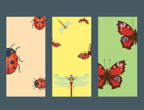 Colorful insects icards wildlife wing detail summer bugs wild vector illustration Royalty Free Stock Photo
