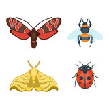 Colorful insects icons isolated wildlife wing detail summer bugs wild vector illustration Stock Photo