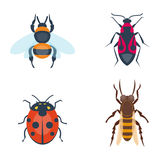 Colorful insects icons isolated wildlife wing detail summer bugs wild vector illustration. Nature pest small animal art sign element stag detail graphic Stock Image