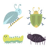 Colorful insects icons isolated wildlife wing detail summer caterpillar bugs wild vector illustration. Colorful insects icons isolated wildlife wing detail Stock Images