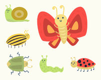 Colorful insects icons isolated wildlife wing detail summer worm caterpillar bugs wild vector illustration. Colorful insects icons isolated wildlife wing detail Stock Images