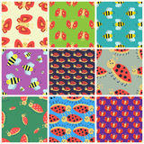 Colorful insects seamless pattern wildlife wing detail summer worm caterpillar bugs wild vector illustration. Stock Photos