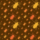Colorful insects vector biology collection Stock Photos