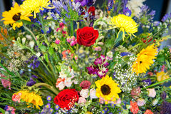Colorful interior arrangement of summer flowers Stock Photo