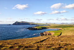 Colorful irish coast Stock Image