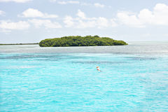 Colorful island with trees on sea stock photos