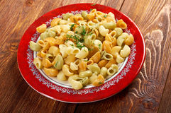 Colorful Italian conchiglie  pasta Stock Images