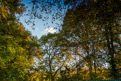 Colorful italian park with trees and autumn colors and water. Italian Park with trees and colorful autumns Stock Photography
