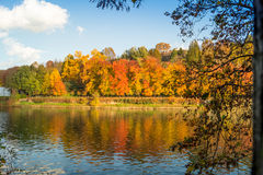 Colorful italian park with trees and autumn colors and water. Italian Park with trees and colorful autumns Royalty Free Stock Photography