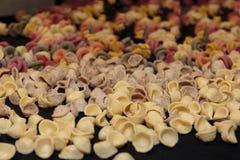 Colorful Italian Uncooked Pasta Assortment on Table. Orecchiette Pugliesi Stock Photos