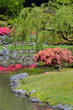 Colorful japanese garden Royalty Free Stock Image