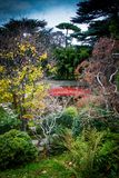 Colorful Japanese garden zen. Japanese style zen garden with many colors and a red bridge Stock Images