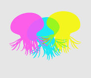 Colorful Jellyfishes Royalty Free Stock Photography