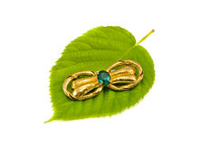 Colorful brooch on green tree leaf  on white Stock Photos