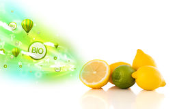 Colorful juicy fruits with green eco signs and icons. On white background Royalty Free Stock Photography