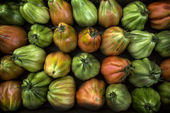 Colorful Juicy Ripe Heirloom Tomatoes Royalty Free Stock Image