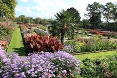 Colorful Kensington palace garden Stock Images