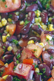 Colorful Kidney Bean Salad Royalty Free Stock Photo