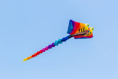 Colorful of kite flying. Stock Photography