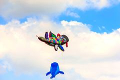 Colorful kite free to fly in the clear sky, a beautiful summer d. Ay, the International Kite Festival royalty free stock photography