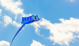 Colorful kite free to fly in the clear sky,. A beautiful summer day .soft focus stock photos