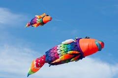 Colorful kites Royalty Free Stock Photos