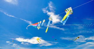 Colorful of kites Stock Photo