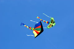 Colorful kites flying Royalty Free Stock Photography