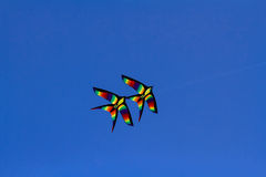 Colorful kites flying Stock Images
