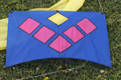 Colorful kites on the lawn Royalty Free Stock Photos