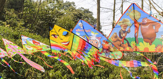 Colorful kites in the park Royalty Free Stock Photos