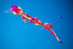Colorful Kites. Two kites in shapes of a lizard or gecko and  a sting ray with the blue sky in the background Royalty Free Stock Photos