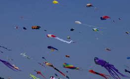 Colorful Kites Stock Images