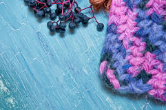 Colorful knitting and berries Royalty Free Stock Images