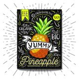 Colorful Label poster stickers food fruits vegetable chalk sketch style, food and spices. Pineapple. Bio eco vegetarian raw farm fresh organic. Hand drawn Royalty Free Stock Photography